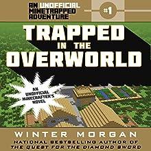 Trapped in the Overworld Audiobook by Winter Morgan Narrated by Nicol Zanzarella