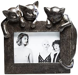 kare bilderrahmen junge katzen k che haushalt. Black Bedroom Furniture Sets. Home Design Ideas