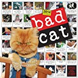 Bad Cat 2014 Wall Calendar