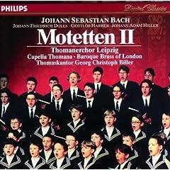 Jauchzet dem Herrn, alle Welt, BWV Anh.160 - Sei Lob und Preis mit Ehren