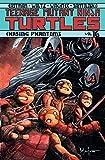 img - for Teenage Mutant Ninja Turtles, Vol. 16: Chasing Phantoms book / textbook / text book