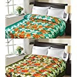 Christy's Collection Super Soft Printed 2 Piece Cotton Blend AC Double Blanket - Multicolor - B0166ELHN2