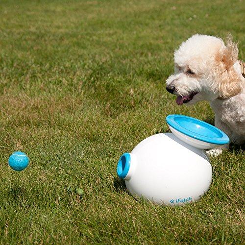 Lanceur de balles automatique pour chien ifetch phone number needed for delivery - Lance balle automatique chien ...