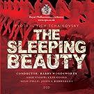 Tchaikovsky: Sleeping Beauty B