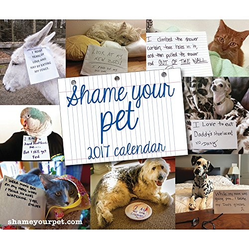Shame Your Pet Desk Calendar
