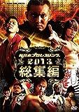 新日本プロレス2013年総集編 [DVD]