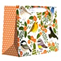 Jillson Roberts Recycled Medium Gift Bags, Little Birdies, 6-Count (MT231)