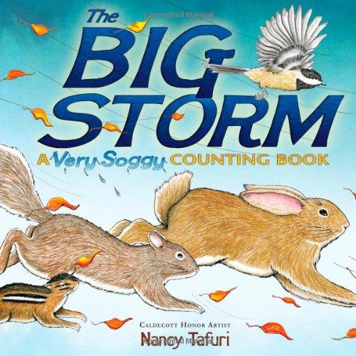 The Big Storm