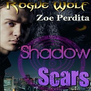 Shadow Scars Audiobook