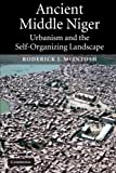 Ancient Middle Niger: Urbanism and the Self-organizing Landscape (Case Studies in Early Societies)