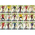 MATCH ATTAX 10/11 2010/2011 - ALLE 18 FAN FAVORIT KARTEN aus SPEZIAL PACK