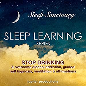 Stop Drinking, & Overcome Alcohol Addiction Audiobook