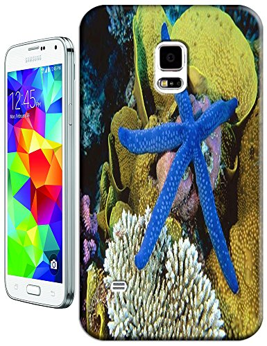 Blue Starfish Under The Ocean Cell Phone Cases For Samsung Galaxy N3 front-47745