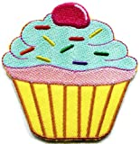 Cupcake Snack Fairy Cake Sweets Retro Disco Fun Applique Iron-on Patch New S-205 Cool Patch Iron On