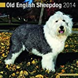 Avonside Publishing Old English Sheepdog 2014 (Calendar 2014)