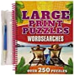 Large Print Puzzles: Wordsearch