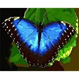 ABEUTY DIY Paint by Numbers for Adults Beginner - Butterfly and Leaves 16x20 inches Number Painting Anti Stress Toys (Wooden Framed) (Color: Butterfly, Tamaño: Wooden Framed)
