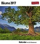 B�ume - Kalender 2017: Kalender mit 5...