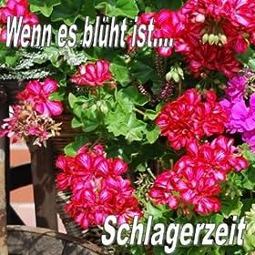 Wenn es blüht ist Schlagerzeit Songtitel: Schau mir in die Augen (Disco-Version) Songposition: 7 Anzahl Titel auf Album: 20 veröffentlicht am: 20.07.2012