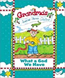 Grandma's Special Stories for Little Boys: What a God We Have (Board Book)