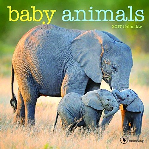 2017 Baby Animals Mini Calendar