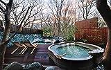 Discover Japana TRAVEL ニッポンの温泉