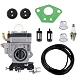 300486 Carburetor with Repower Tune-Up Kit for Earthquake E43 E43CE E43WC Auger MC43 MC43E MC43CE MC43ECE MC43RCE Tiller MD43 WE43 WE43E WE43CE Edger