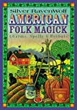 American Folk Magick (156718720X) by RavenWolf, Silver