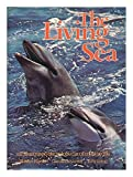 The Living Sea: An Illustrated Encyclopedia of Marine Life (0399117482) by Burton, Robert