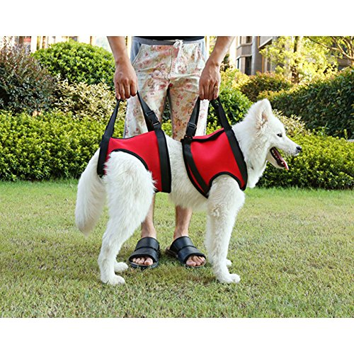 Fuloon Medical Dog Rear Carrier / Lifting Harness / Dog Lifting Aid Medical Dog Front Carrier Harness (L) (Lifting Dog Harness compare prices)