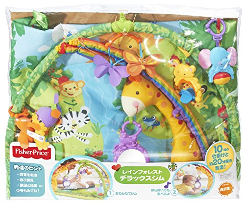 fisher price rainforest melodies and lights deluxe gym manual