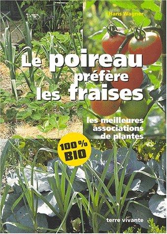 Le poireau préfère les fraises : les meilleures associations de plantes