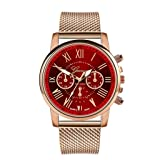 Womens Luxury Wristwatch, Mitiy Roman Numerals Stainless Steel Mesh Band Analog Quartz Watch- Gift for Women (Color: Red)