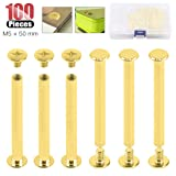 Hilitchi 50-Sets M5 Brass Plated Phillips Chicago Screw Posts Binding Screws Assortment Kit for Scrapbook Photo Albums Binding, Leather Repair - Gold (M5 x 50mm-50Sets) (Color: M5 x 50mm-50Sets)