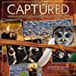 Captured: Lessons from Behind the Lens of a Legendary Wildlife Photographer (Voices That Matter)
