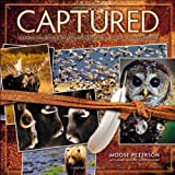 img - for Captured: Lessons from Behind the Lens of a Legendary Wildlife Photographer (Voices That Matter) book / textbook / text book