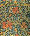 The Designs of William Morris (Phaidon Miniature Editions) by Phaidon Press Ltd
