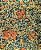 echange, troc Phaidon Press, William Morris - The Design of William Morris (en anglais)