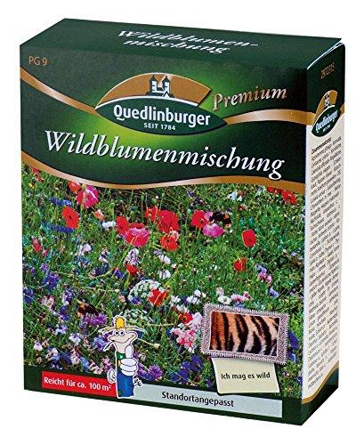 blumenwiese-wildblumenmischung-ohne-graser-von-quedlinburger-saatgut