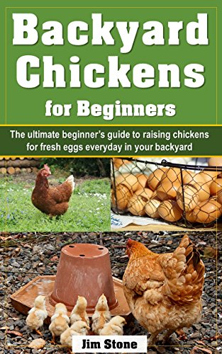 Borrow Backyard Chickens for Beginners: The ultimate ...