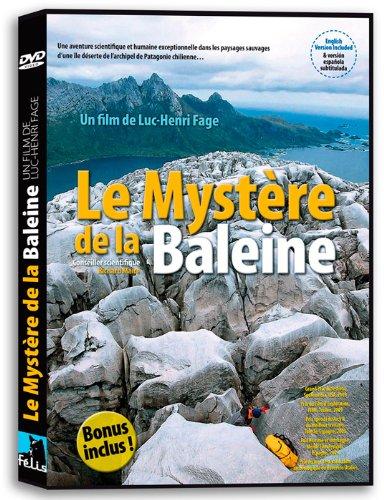 le-mystere-de-la-baleine