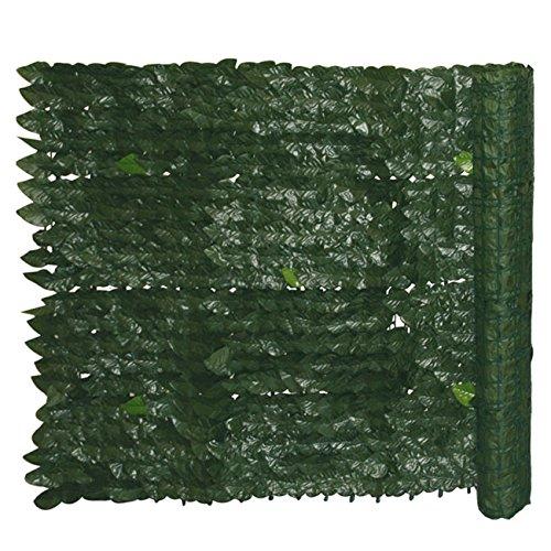 Siepe Evergreen Edera mt.: 1x3
