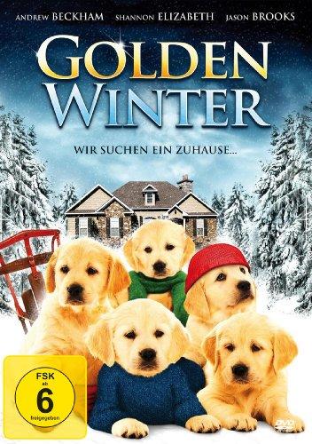 Golden Winter - Wir suchen ein Zuhause (DVD)