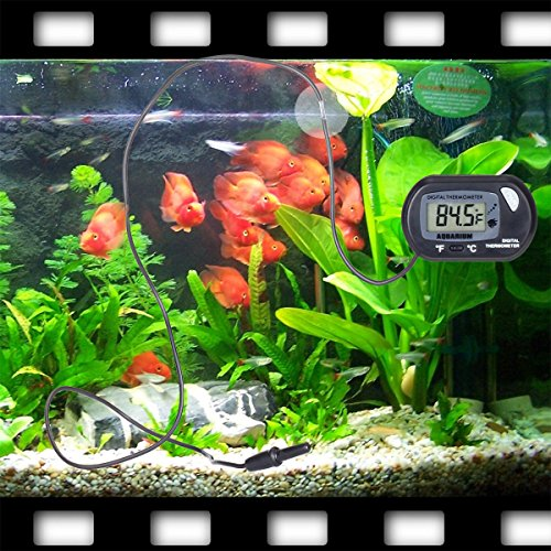 Aquarium thermometer risepro digital water thermometer for Fish tank temperature
