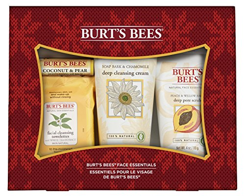 burts-bees-face-essentials-holiday-gift-set-4-products-in-gift-box