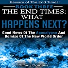 The End Times: What Happens Next? Hörbuch von Tiffany Domena Gesprochen von: Barbara Ann Martin