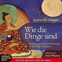 Wie die Dinge sind: Eine zeitgemäße Einführung in die Lehre Buddhas Hörbuch