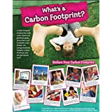 What is a Carbon Footprint? Poster