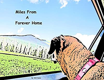 Miles From A Forever Home