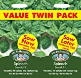 Mr. Fothergill's 23245 Spinach Samish Seed Bumper Pack